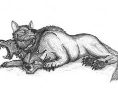 Волк 3-главый